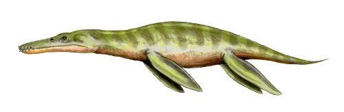 Liopleurodon Pic