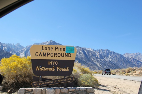 Facts about Lone Pine