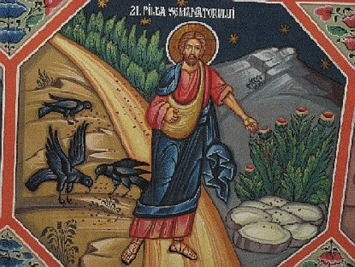 Facts about Luke in the Bible