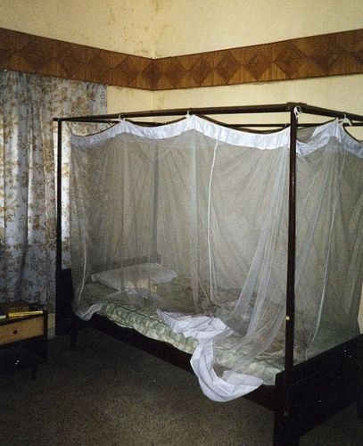 Facts about Malaria in Africa