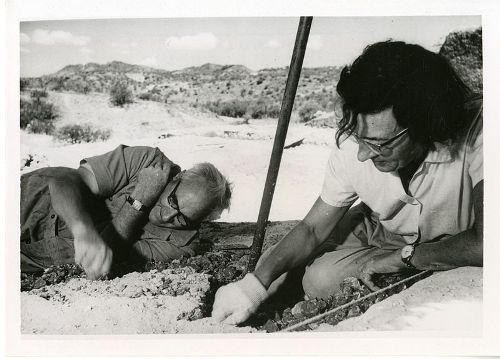 Facts about Mary Leakey