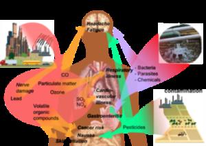 land pollution effect