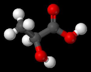 lactic acid facts