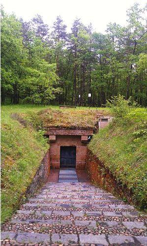 lascaux caves image