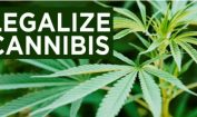 Legalize Cannabis