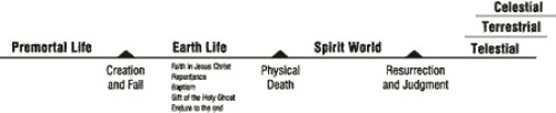 Life after Death Facts