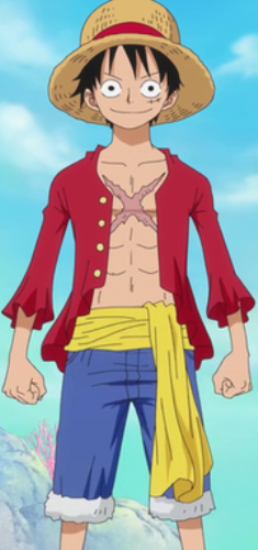 Facts about Luffy