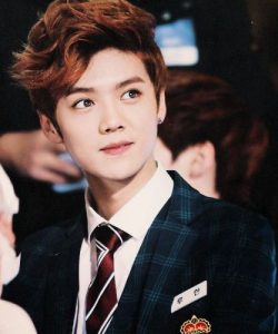 Facts about Luhan